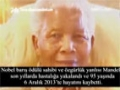 Nelson Mandela Kimdir? - English Sub Turkish
