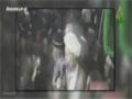 صدای اعتراض مردم دنیا به اعدام شیخ نمر - Farsi