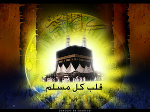 Haj / Ummrah / Ziarat