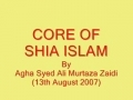Four Perspectives On Religion - Core Of Shiat - Urdu