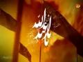 [06 Nauha 2016] Fee Matam e Hussain as - Shuja Rizvi - Muharram 1438- Urdu
