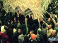 [Short Clip] living in Canada missing Imam Reza PBUH Clip Farsi