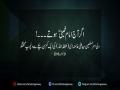 Clip - Ager Imam Khomeni Hootey - Rahbar-e-Moazzam - Farsi Sub Urdu