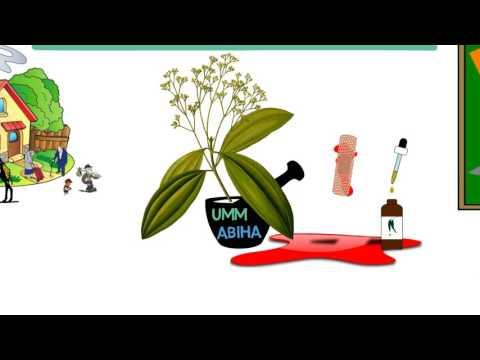 Lady Fatimah (A) | Presentation | English