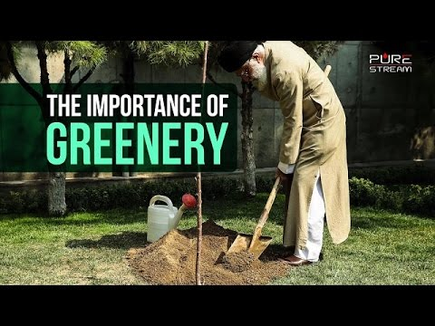 The Importance of Greenery | Imam Sayyid Ali Khamenei | Farsi sub English