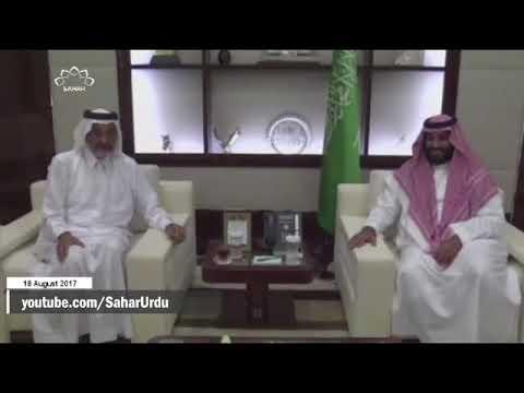 [18Aug2017] خلیج فارس تعاون کونسل کا بحران- Urdu
