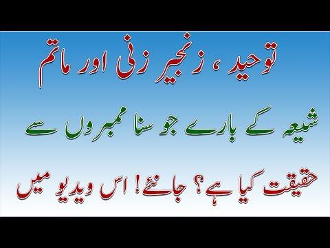 Shia Aqaid | Zanjeer Zani aur Matam | Nice Talk | Allama Ameer Hussain Naqvi