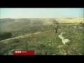 Israel plans to build another 73000 houses in occupied territory - 08Mar09 - English