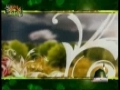 SPECIAL! Hafta-e-Wahdat - Week of Muslim Unity - 2009 Documentary - Part 2- Urdu