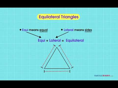[Video] Types of Triangles - English