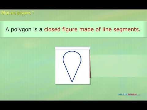 [Video] Types of Polygon - English