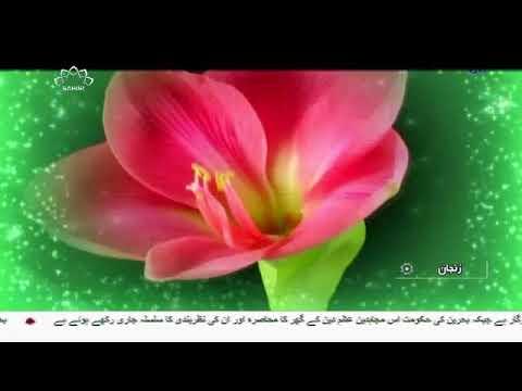 [27Nov2017] ریبع الاول ، امام زمانہ (عج) کی امامت کا آغاز  - Urdu