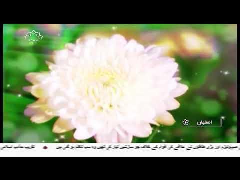[05Dec2017] پیغمبر اسلامؐ اور حضرت امام جعفر صادق علیہ السلام کی شب ولا?