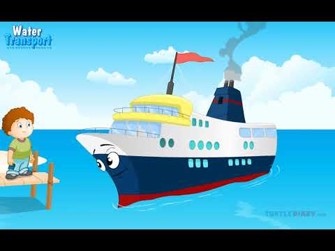 [Educational Videos] Water Transport for primary classes - English