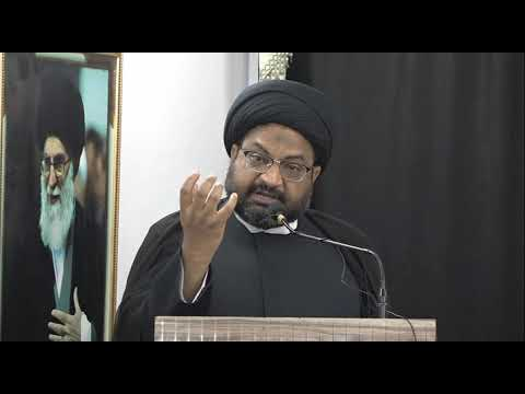 Protest Against Demolition of Jannat ul-Baqi | Moulana Syed Taqi Raza Abedi - Urdu