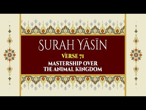 Mastership over the animal kingdom - Surah Yaseen - Verse 71 - English