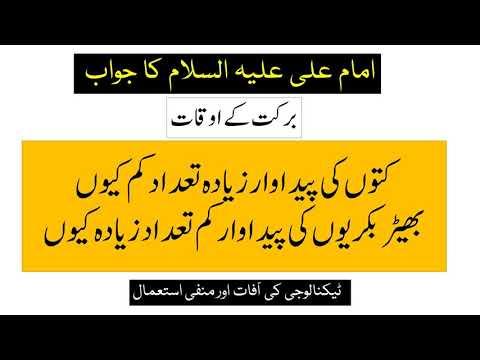 برکت اور خیر کے اوقات۔۔۔ امام علی علیہ السلام کا فرمان - Urdu