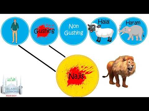 Fiqh Chapter 2 - Najis Things - Lesson 3 - English