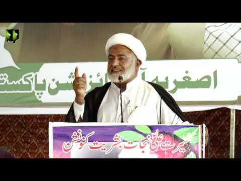 [Speech] Moulana Mohsin Mehdavi  | Youm-e-Ali (as) | Asghariya Org. Convention 2019 - Sindhi