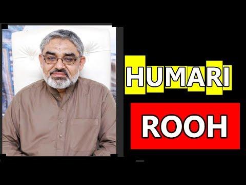 Rooh Kya Hai - Rooh ki Haqeeqat  || H.I Ali Murtaza Zaidi - Urdu