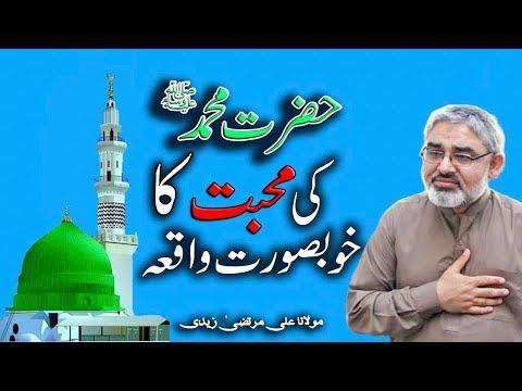 [Clip] Hazrat Muhammad saww ki Aam Aadmi say muhabbat | H.I Syed Ali Murtaza Zaidi Urdu