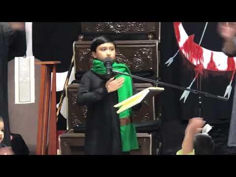 [Noha] Hoo paau zaqmoon se bhare aisa musafir koun hai | Alamdar Moosavi | Toronto Canada - Urdu