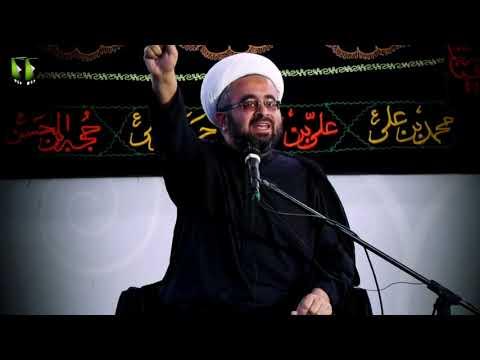 [Clip] غصبِ خلافت امیرالمومنین ؑ  کے چند عوامل   H.I Muhammad Ali Ghayyori - Urdu
