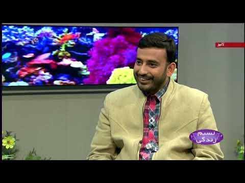 [31Jan2020] میاں بیوی اور گھر کی ذمہ داری : نسیم زندگی  - Urdu