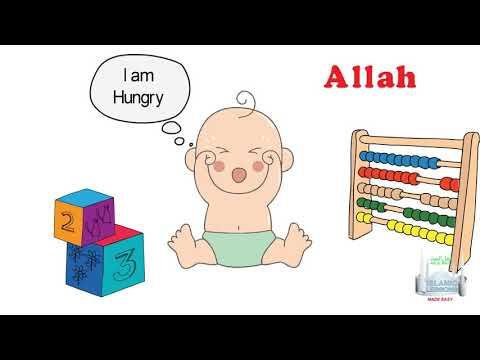 MADRASA - Allah looks after everything - B9 - English