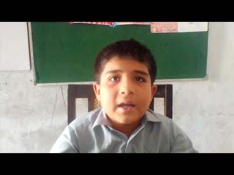 [Hidayat Quran] Translation of 10 selected Ayaat I Muhammad Mohsin Mehdi | Sindhi
