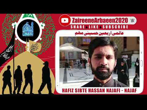 Clip | Hafiz Sibte Hassan Najafi | Aalami Zaireene Arbaeen 2020 - Urdu