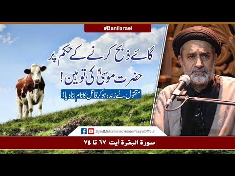 Gaye Zibah Karny Kay Hukum Par Hazrat Musa (A.S) Ki Tauheen | Ayaat-un-Bayyinaat | Hafiz Syed Haider Naqvi | Urd