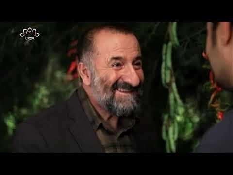 [02] Aafat He Aafat   Season 1   آفت ہی آفت   Urdu Drama Serial
