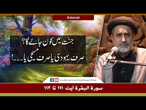 Jannat Main Kon Jaye Ga? | Ayaat-un-Bayyinaat | Hafiz Syed Muhammad Haider Naqvi | Urdu