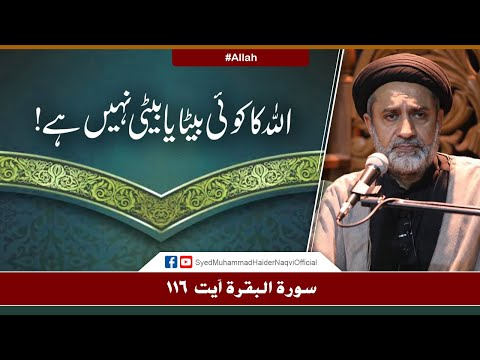 Allah Ka Koi Beta Ya Beti Nahi Hay! | Ayaat-un-Bayyinaat | Hafiz Syed Muhammad Haider Naqvi | Urdu