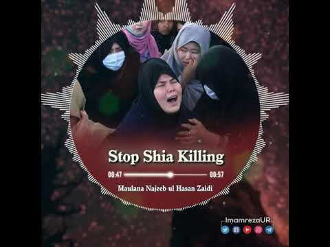 Stop Shia Killing | Hazara Shia Killing | Shia Genocide | Official Shrine of Imam Reza | Urdu