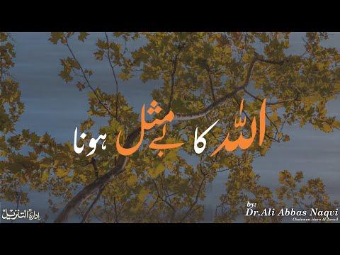 016 | Hifz e Mozoee (Har Roz Quran o Ahlebait(A.S)k Sath) I Allah Ka By Misaal Hona | Dr Ali Abbas Naqvi
