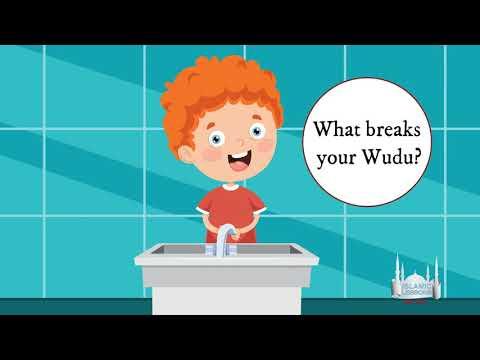 MADRASA - What Breaks Your Wudu?  B48 | English