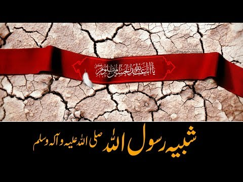 شبیه رسول الله صلی الله علیه و آله وسلم   Maulana Ali Hussnain - Urdu