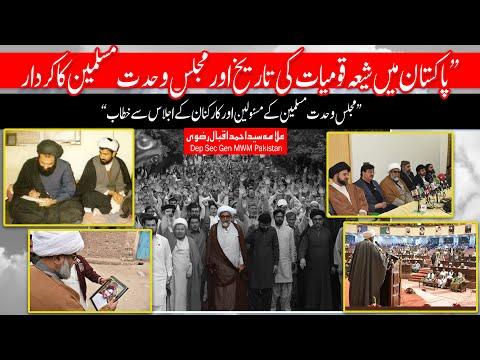پاکستان میں شیعہ قومیات کی تاریخ اور مجلس وحدت مسلمین کا کردار