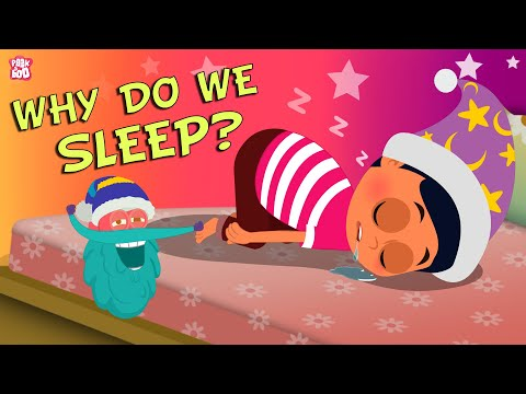 Why Do We Sleep? The Dr. Binocs Show | Best Learning Videos For Kids | English