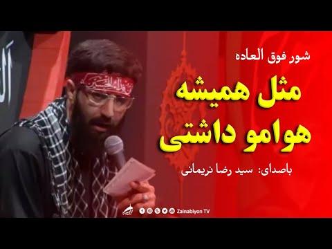مثل همیشه هوامو داشتی - سید رضا نریمانی | شور زیبا و فوق العاده | Farsi