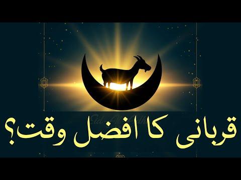 🎦  عید قربان 3 | قربانی کرنے کا سب سے افضل وقت کونسا ہے؟ - Urdu