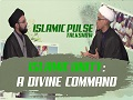 Islamic Unity: A Divine Command | IP Talk Show | English