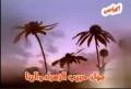 Mawlid Habeeb al Zahra - Arabic