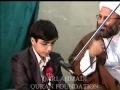 Qari Ahmadi beautiful Quran recitation - Arabic