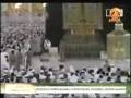 Cat touches Kaaba - a cute & amazing scene - Arabic - All languages