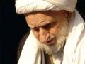 Ayatollah Behjat passes away [Arabic]