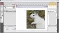 Magic Mouse Pan Image Windows Flash AS3 Tutorial CS3 CS4 - English