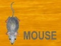 Alphabets - [M] is for Mouse - English